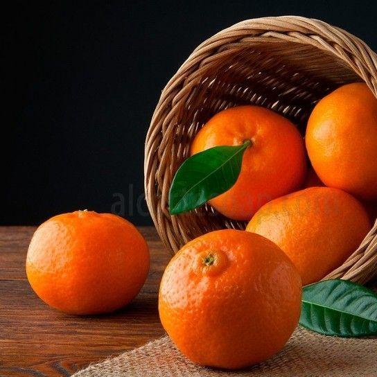 Citrus Tangerine