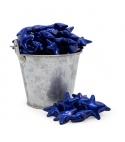 Perla de baño estrella azul (100ud)